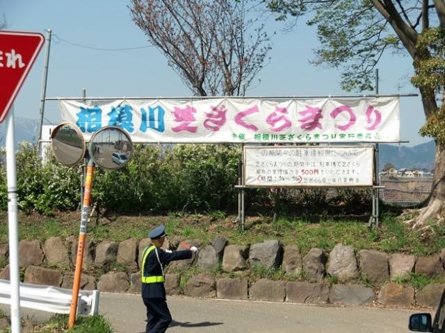 Shibazakura1848
