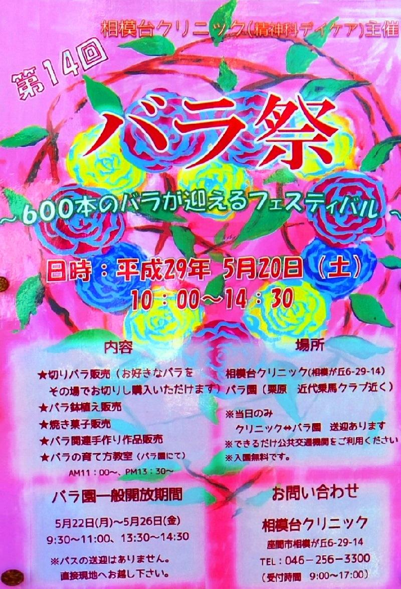 Sagamidai_c_8609_2